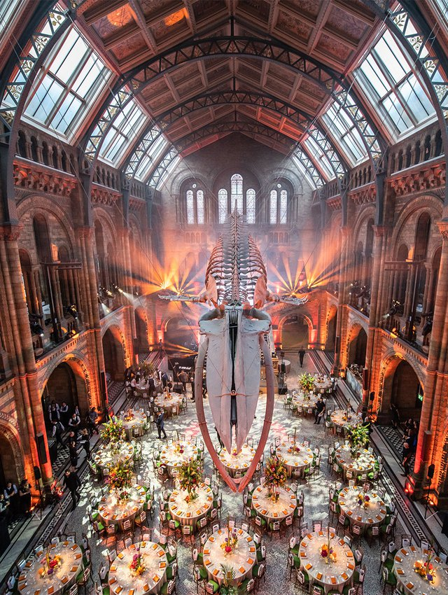 Natural History Museum with Just 70